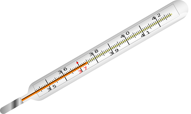 Intaktes Thermometer